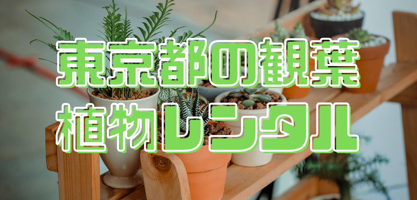 東京都観葉植物レンタル
