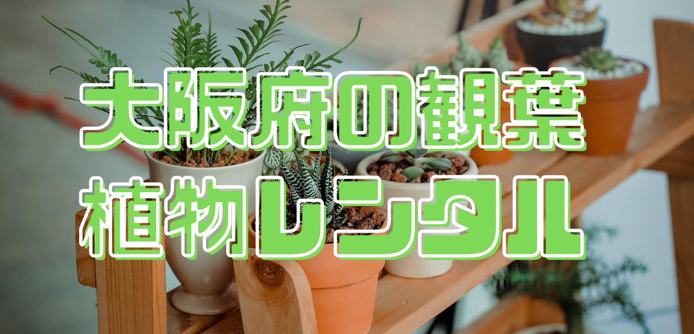 大阪府の観葉植物レンタル