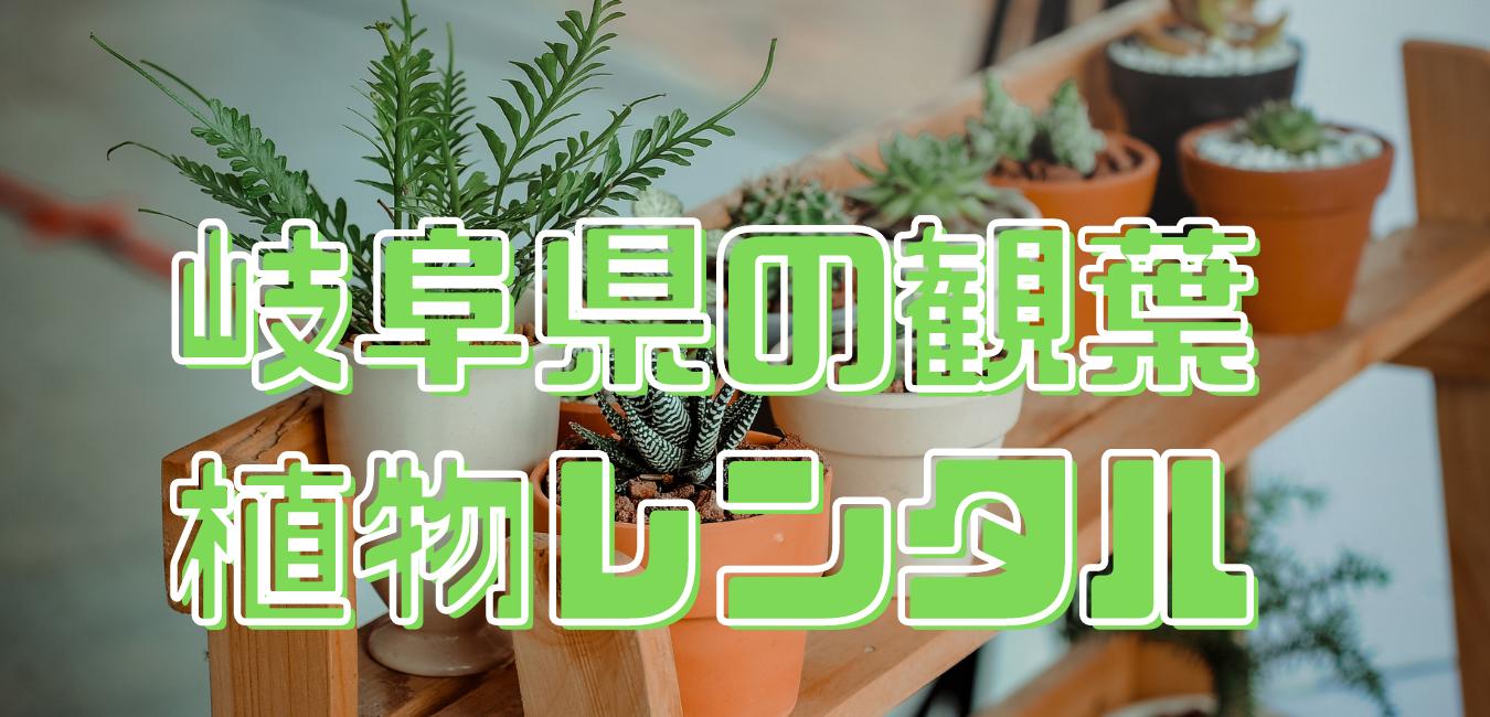 岐阜県観葉植物レンタル