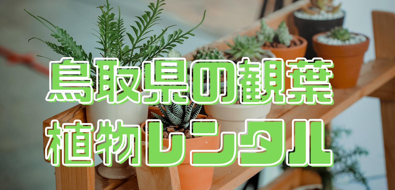 鳥取県の観葉植物レンタル