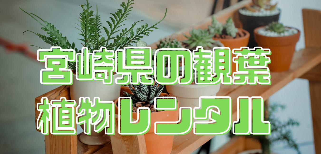 宮崎県観葉植物レンタル