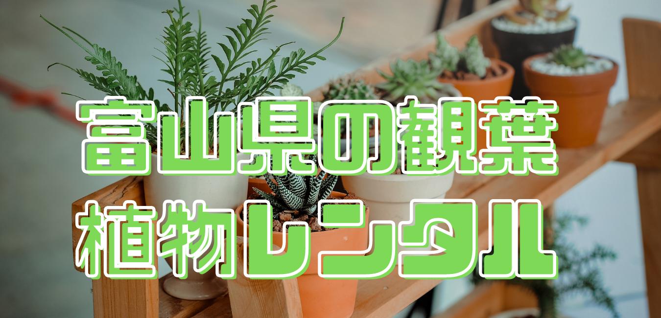 富山県観葉植物レンタル