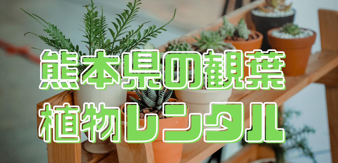 熊本県 観葉植物レンタル業者一覧